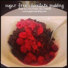 Sugar Free Chocolate Pudding